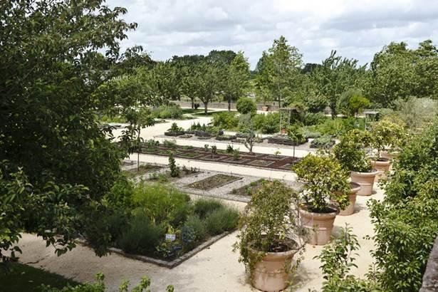 jardin botanique la gacilly-morbihan-bretagne-sud.jpg © jardin botanique la gacilly