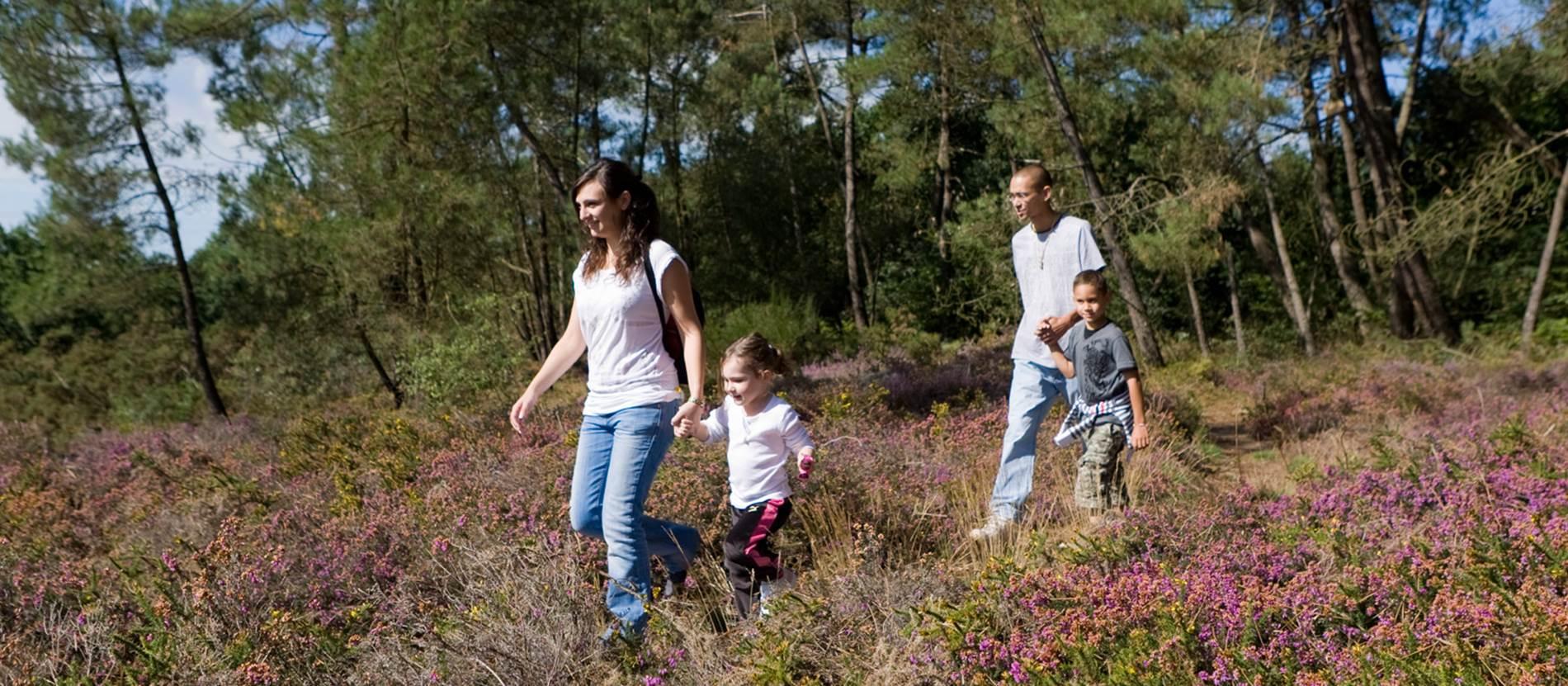 Balade Nature Rochefort en Terre © MorbihanTourisme