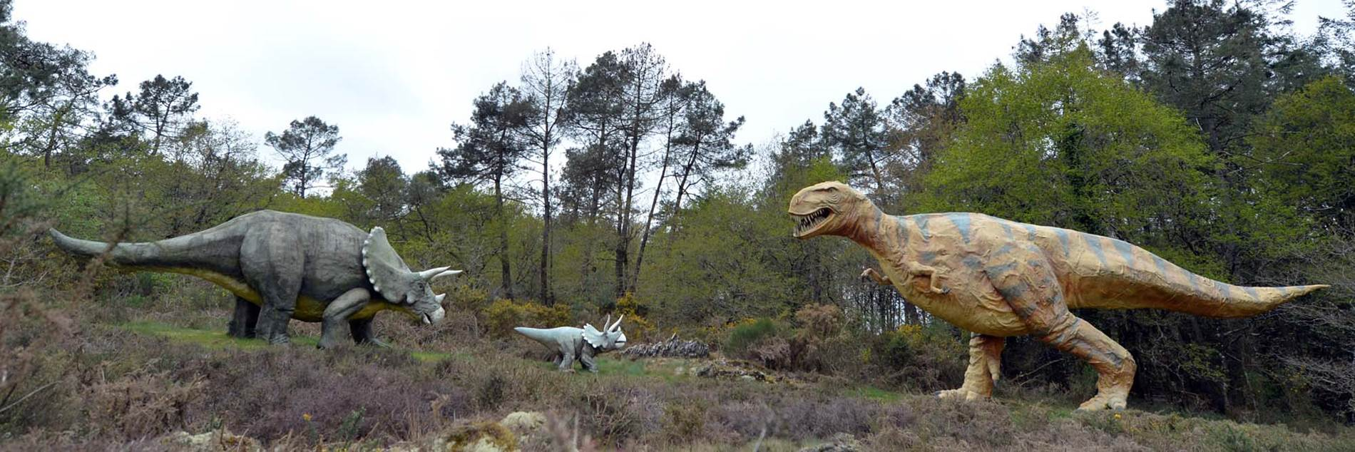 parc de prehistoire de bretagne - malansac - morbihan bretagne sud-01 © Michel RENAC