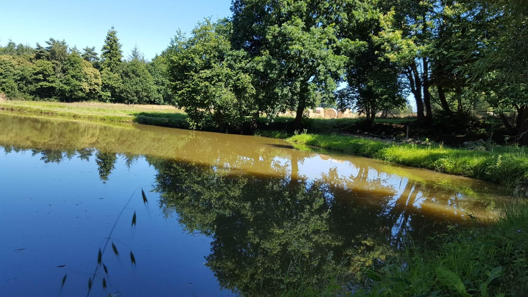 étang de pêche ©