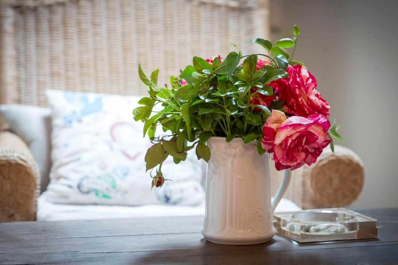 La rose Brocéliande s'épanouit au ClosduMènAllèn ©