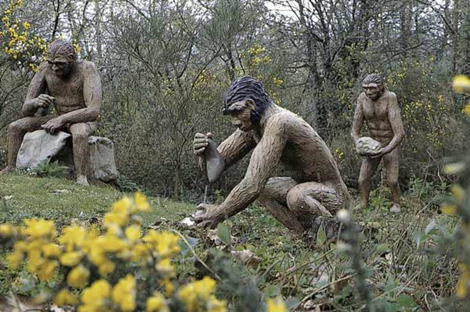 parc de prehistoire de bretagne - malansac - morbihan bretagne sud © OT Vannes
