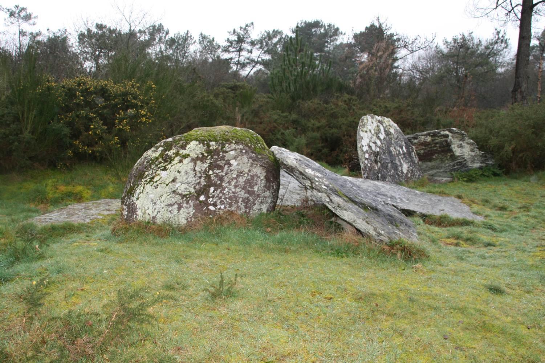 Le Clos Bocher - Landes de Monteneuf - Morbihan Bretagne sud © CDT 56 - P GOUEZIN