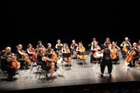 10ème Rencontres de Violoncelles en Morbihan
