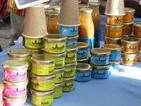 Atelier dégustation de produits à base de poisson de Loire