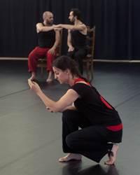 Danse : Le ring des corps