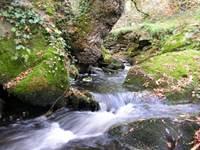 Pêche parcours Le Pont-Christ