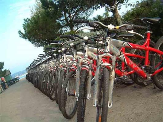 Ile aux Moines locations vélos