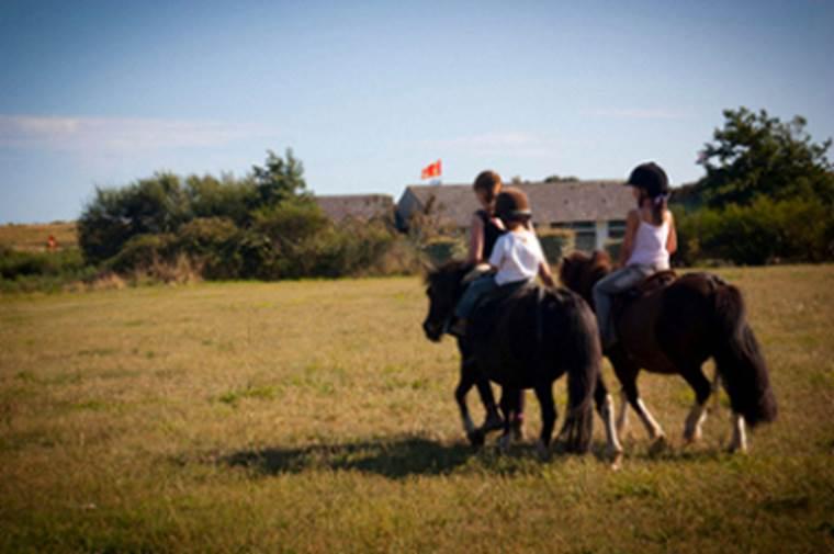 Arzon-Equitation-Presqu'île-de-Rhuys-Golfe-du-Morbihan-Bretagne sud © David Herbreteau