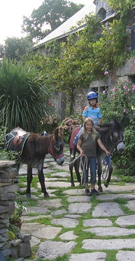 Les ânes du Tay © Les ânes du Tay