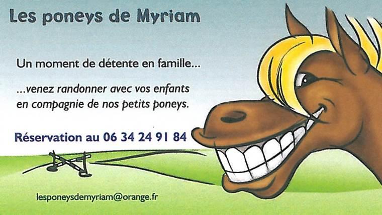 Poneys-Beignon-Morbihan-Bretagne-Sud ©