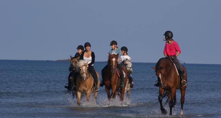 Erdeven Equitation Morbihan Sud ©