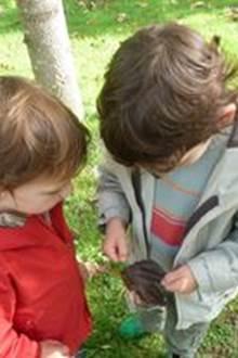 Sortie en forêt enfant /parent