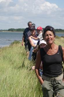 Balade à Locmariaquer, découvrir l'autre côté de Golfe avec Gwen