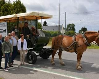 Navette hippomobile Questembert marché - Morbihan Bretagne Sud ©