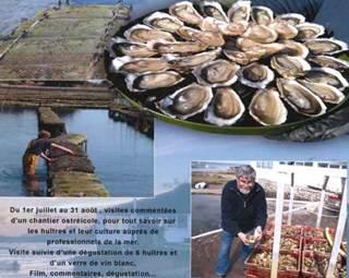 Visite ostréicole Tibidy - Carnac - Morbihan Bretagne Sud © Tibidy