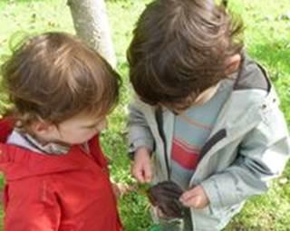 Sortie en forêt enfant/parent - Questembert ©