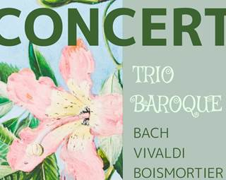 Concert Trio Baroque ©