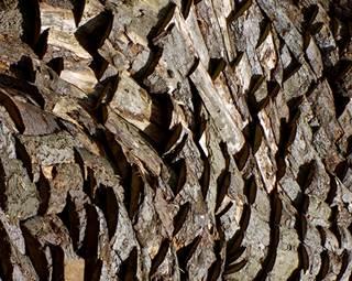 exposition-intrant-simon augade-musee de la cohue-vannes-golfe du morbihan-bretagne sud © Musee des beaux arts la cohue
