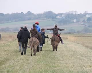 promenade avec les ânes © des marais et des ânes