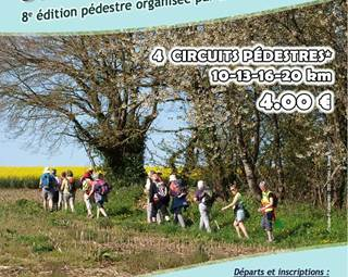 Randonnées La Questembertoise - Questembert ©