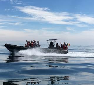 Sorties en mer Escapade Marine (sur Ponant express)