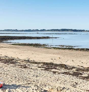 Plage des Granges Billiers Morbihan