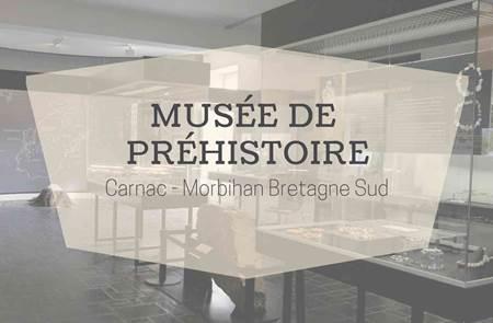 Musée de la Préhistoire de Carnac - Visite guidée « à petits pas »