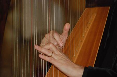 Concert de Nolwenn Arzel - Harpe celtique