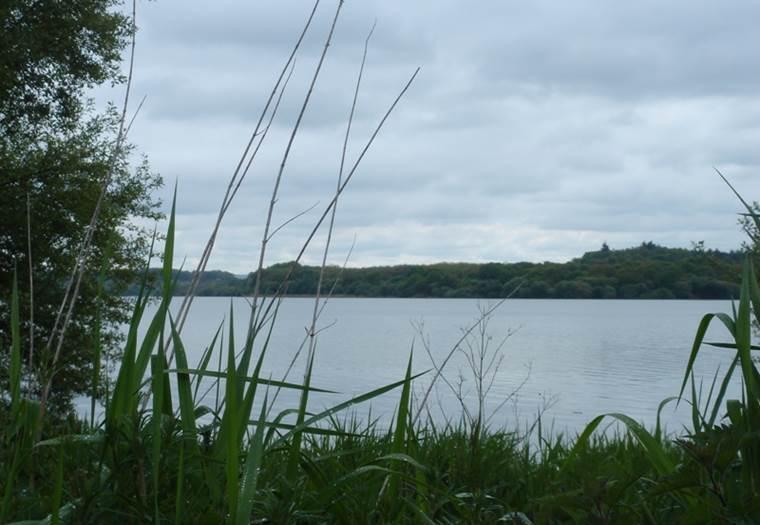 Site de la Ville Goyat - Taupont - Morbihan Bretagne sud © CDT 56