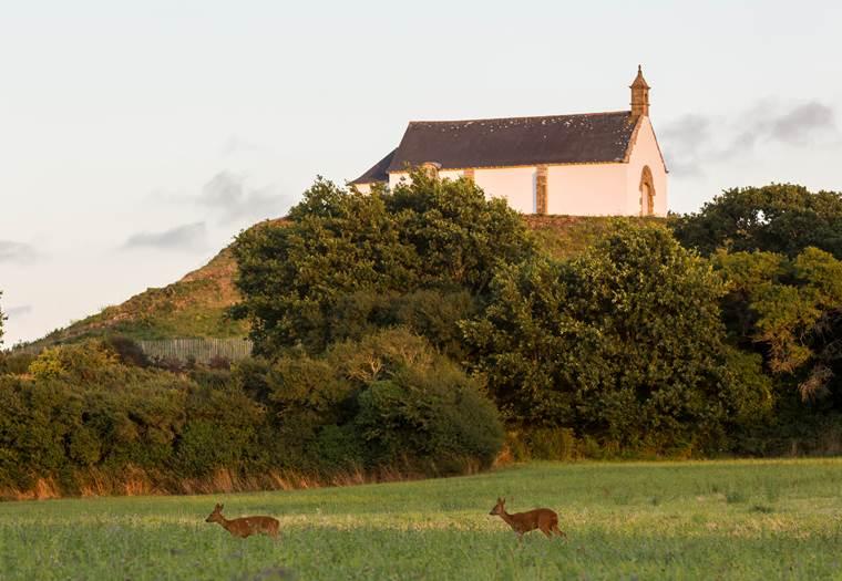 Tumulus-St-Michel-Morbihan-Carnac -Bretagne-Sud © SAINT MICHEL 2