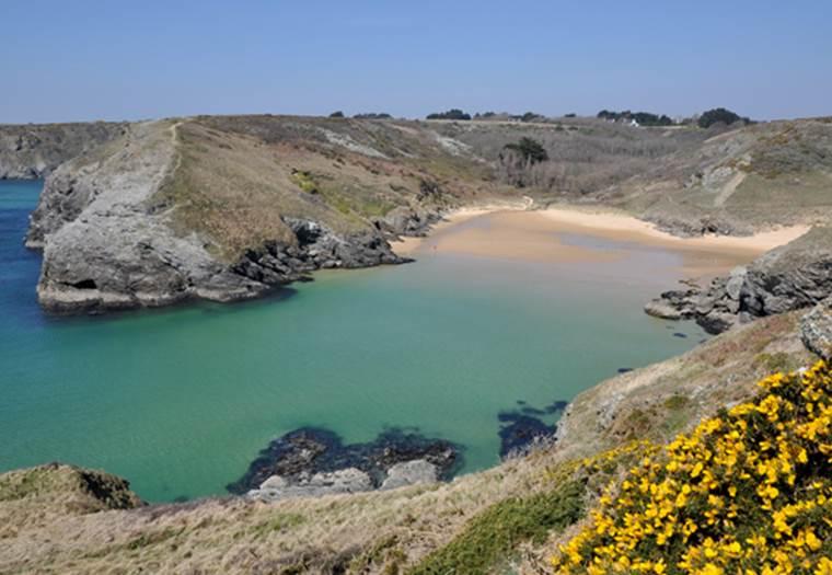 Plage-d'Herlin-Bangor-Morbihan-Bretagne-Sud ©