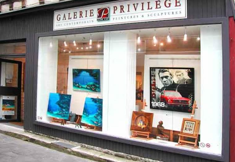 Galerie-Privilège-vannes-golfe-du-morbihan ©