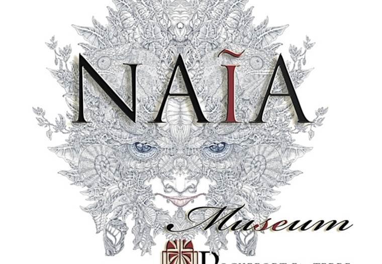 Naïa Museum - Rochefort-en-Terre © Naïa Museum