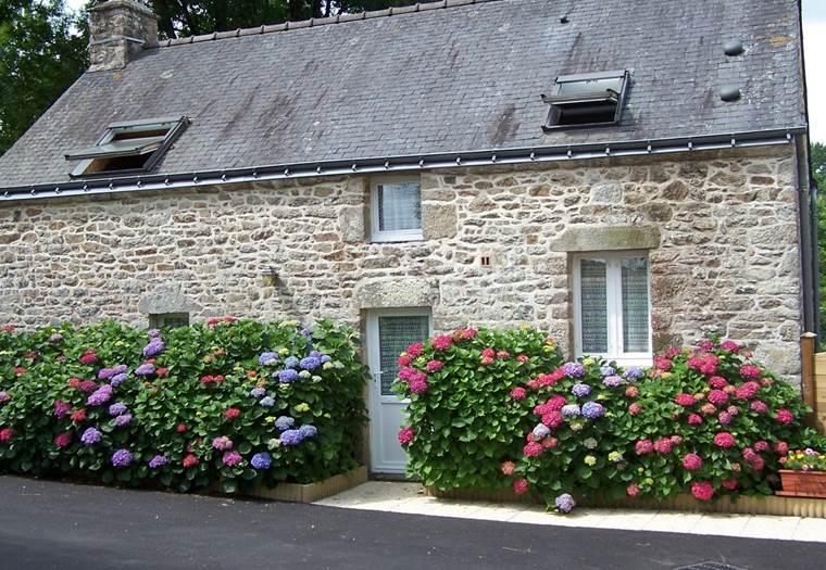 LES HORTENSIAS - Gîte à Caden - Morbihan - Bretagne Sud © JUBERT