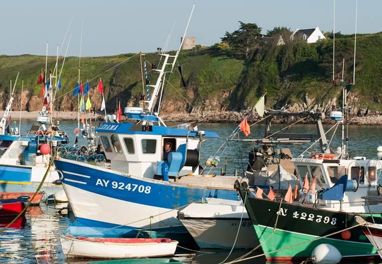 Port de l'Ile de Houat © Xavier Dubois