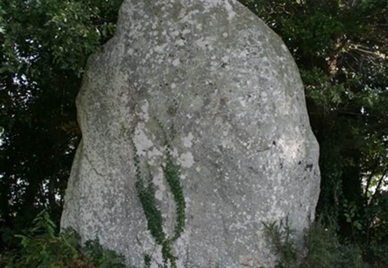 Menhir du Bignon St Guyomard Morbihan Bretagne-sud © CDT56