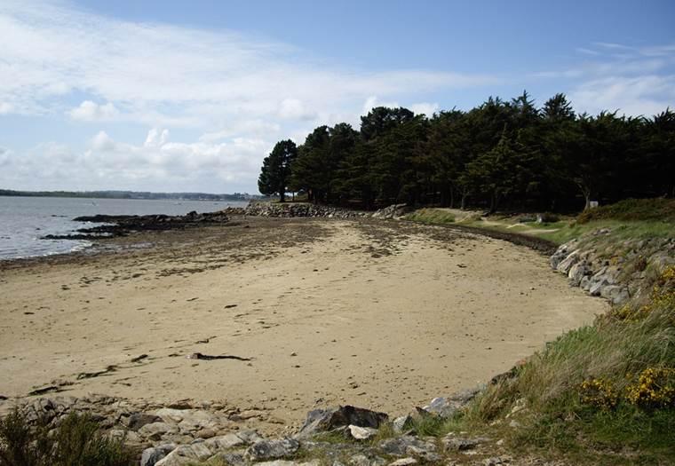 Ile de Boëde - Cadouarn et Pointe du Bill - SENE