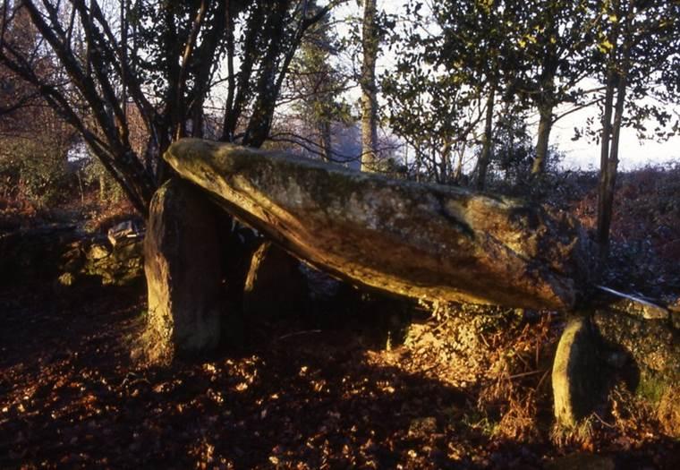 dolmen de la gree morbihan bretagne-sud © cdt56