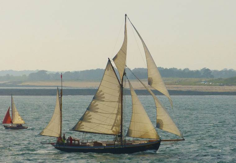 Le Lys Noir - Morbihan Bretagne Sud ©