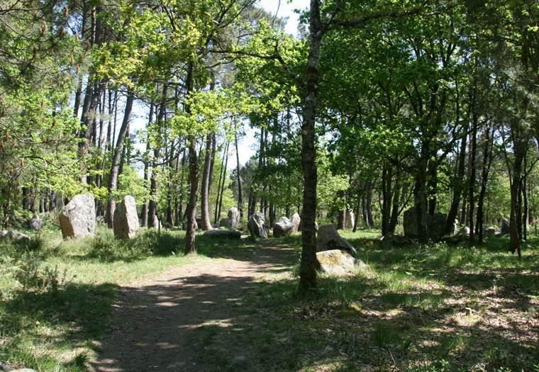 Al Lannec er Gadouer - Forêt du Varquès - Erdeven - Morbihan Bretagne sud © CDT 56 - P GOUEZIN